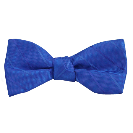 Picture of Modern Solid Blue/Violet Bow Tie