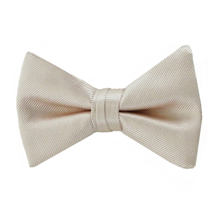 Picture of Simply Solid Petal Bow Tie