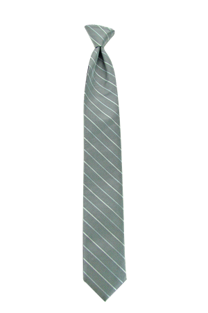 Picture of Modern Solid Platinum Windsor Tie