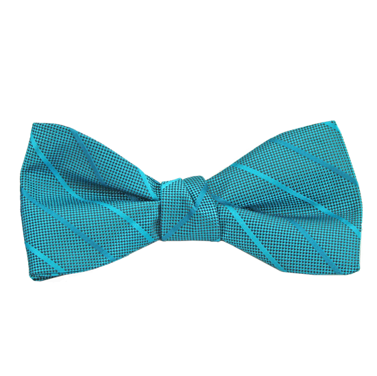 Picture of Modern Solid Oasis Bow Tie