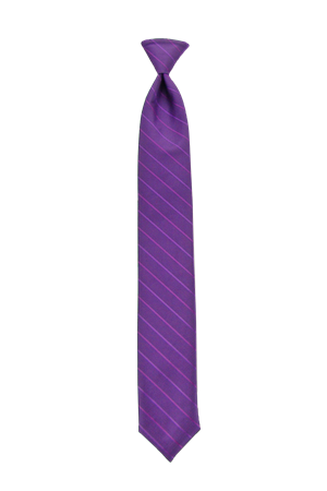 Picture of Modern Solid Aster Windsor Tie